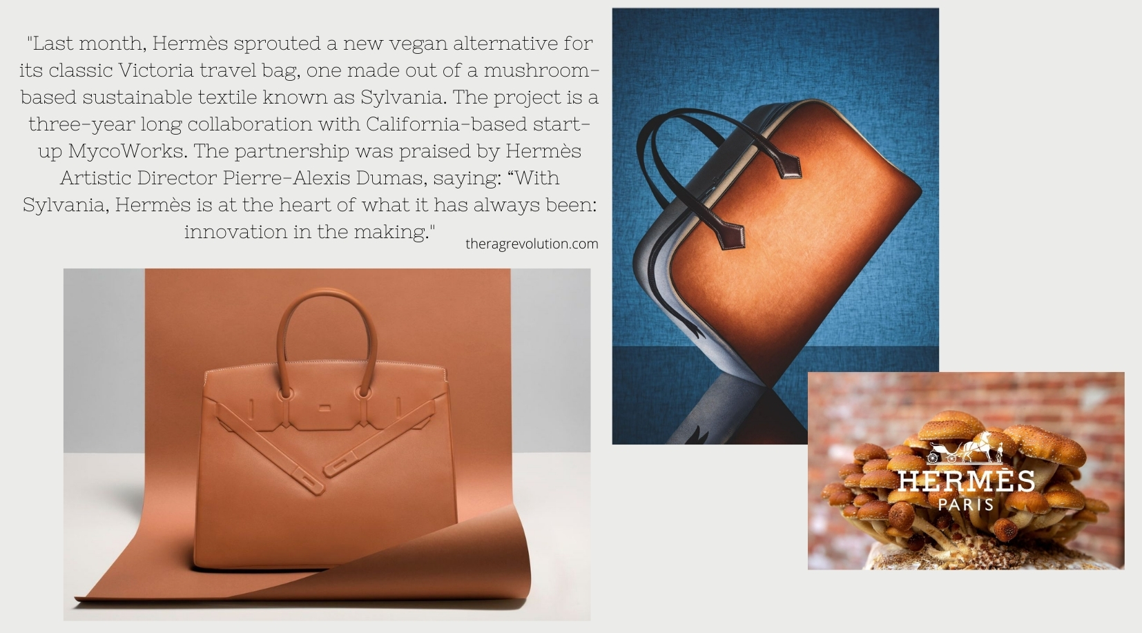 Hermés Victoria travel bag created from MycoWorks mushroom leather